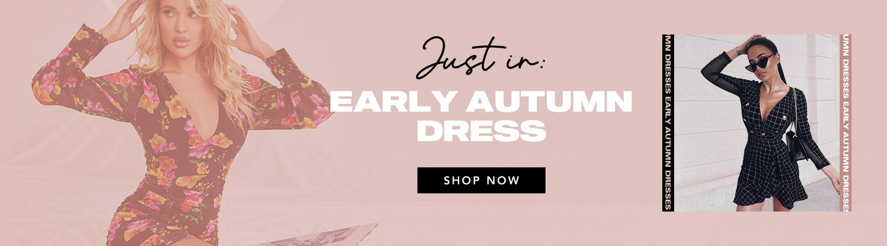 Early Autumn Dresses