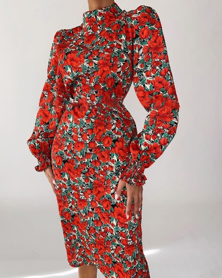 Puff Lantern Sleeve Floral Print Dress