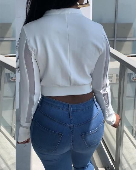 Sheer Mesh Zip Front Long Sleeve Crop Coat