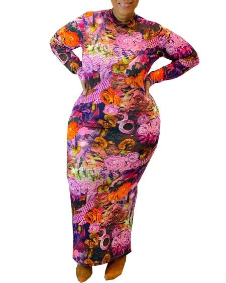 Graphic Print Long Sleeve Maxi Dress