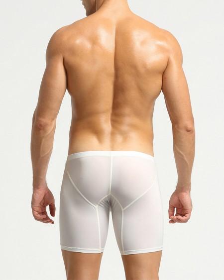 Solid Skinny Mesh See-through Breathable Briefs Underwear