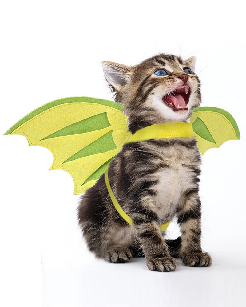 Pet Wings Halloween Costume Adjustable Dog Cat Transforms Into Pterodactyl Flying Dinosaur Wings for Puppy Kitty Festival Party